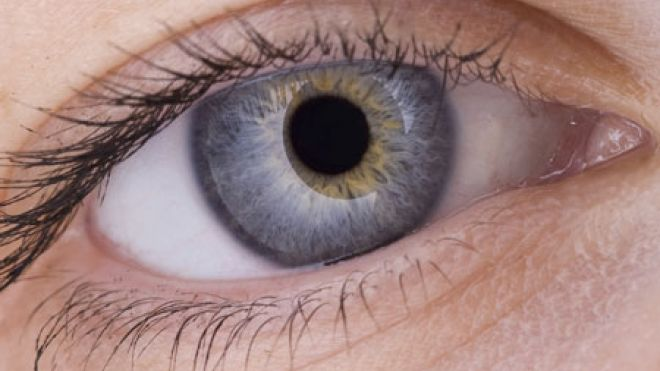 стволовые клетки, восстановление зрения