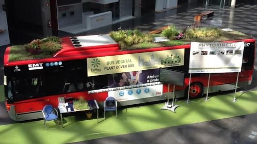 автобус с газоном на крыше