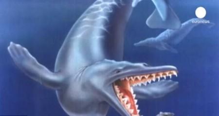 Останки древнего кита