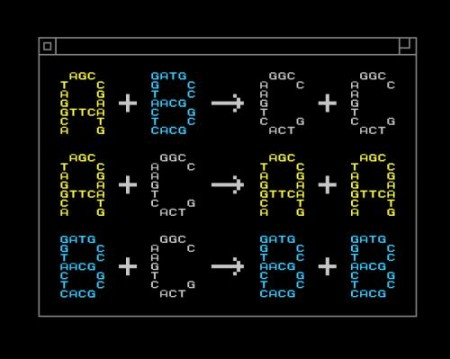 синтетическая ДНК