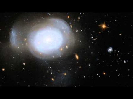 галактика «Белая роза»