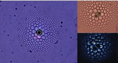 Жидкокристаллическая линза