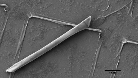 Наноробот-сперматозоид