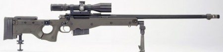 Accuracy International L115A3