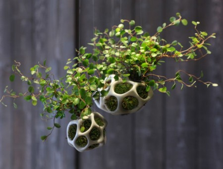 cella modular planter pod