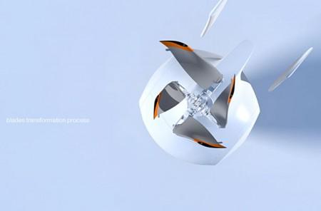 flying vehicle