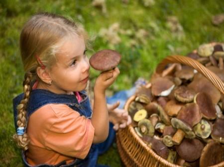 ein kleines mädchen mit einem korb voller pilze