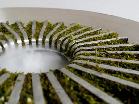moss humidifier