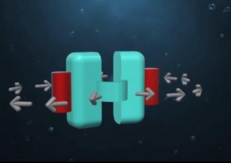 microbotscallop