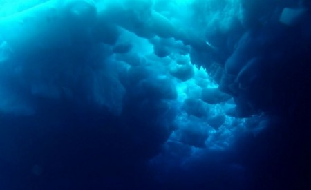 seabed
