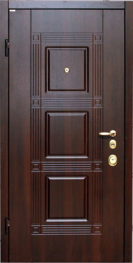 dveri-vhodnie