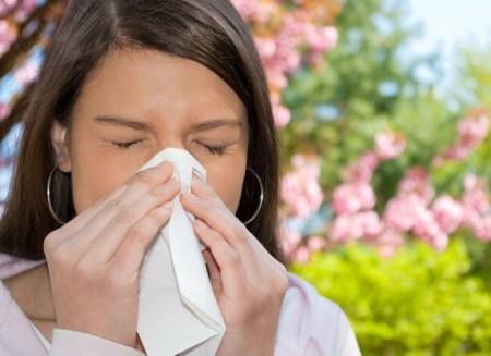 summer-allergy
