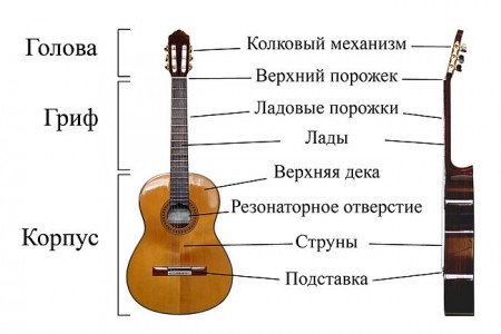 650px-Classical_Guitar_labelled_russian