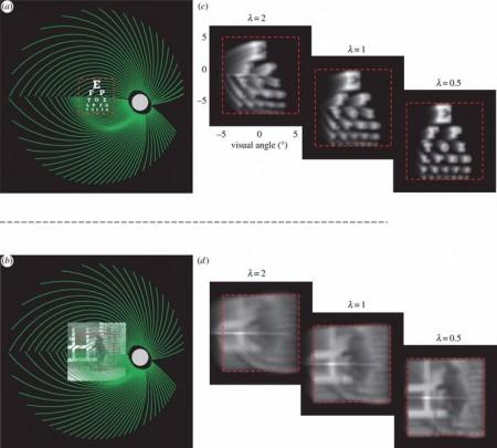 bionic-sight-simulation-3