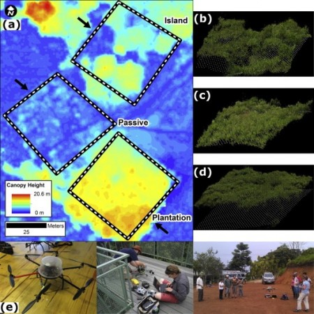 drones-reduce-forest-conservation-cost-1