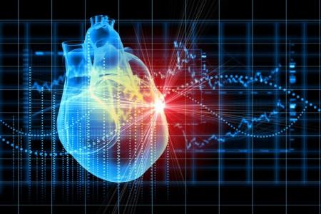 heart-muscle-regeneration-5
