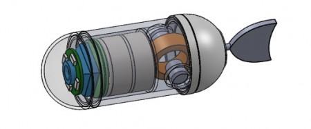 tadpole-endoscope-6