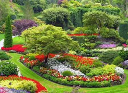 garden-contrasts