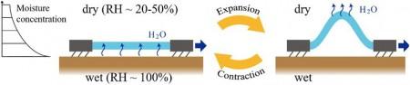 Разработан нано-робот заменяющий крем