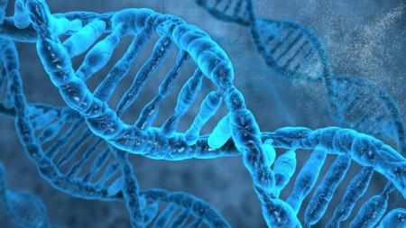 Ученые в Торонто отключали гены чтобы найти самые нужные