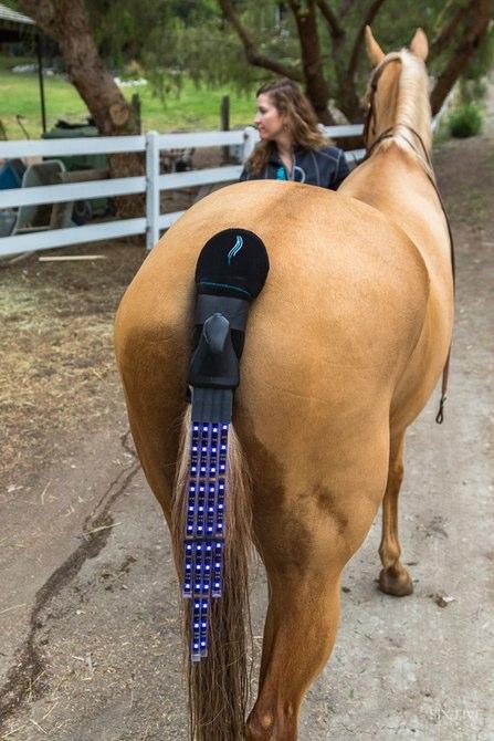 Задние габаритные огни для конного комплекта