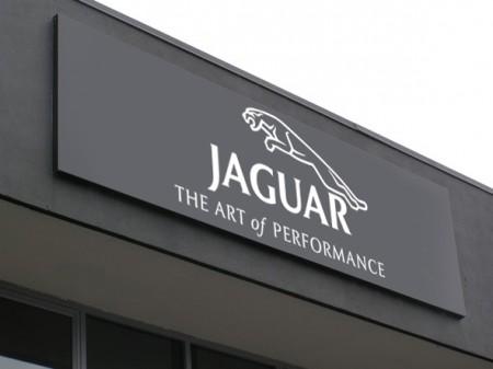 jaguar_nesvet