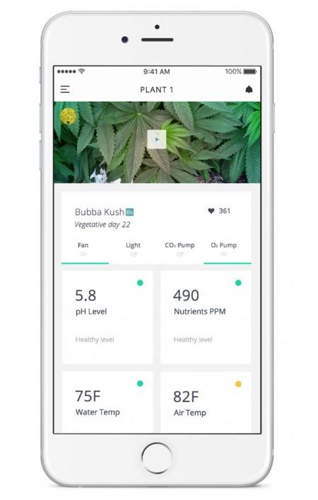 приложение для камеры