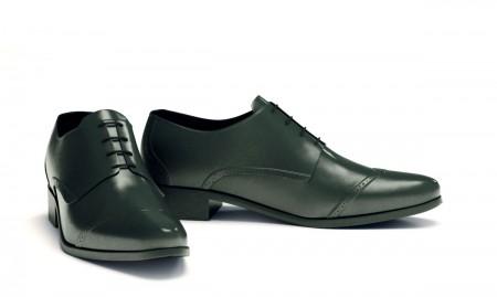 pribylnyj-biznes-po-chistke-obuvi