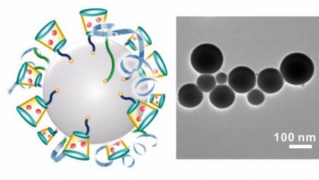 """Ученые из Каролины разрабатывают """"нано-терминатора"""" для борьбы с раком"""