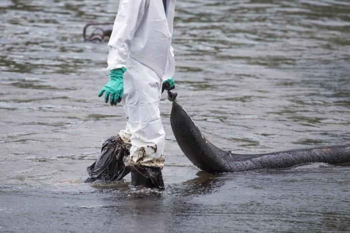 Ученые разработали губку отделяющую нефть от воды