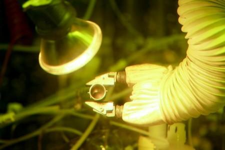 """В США стали получать плутоний 238 """"из пробирки"""""""