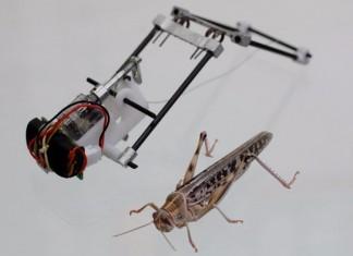 Создан робот саранча прыгающий на 3 метра в высоту
