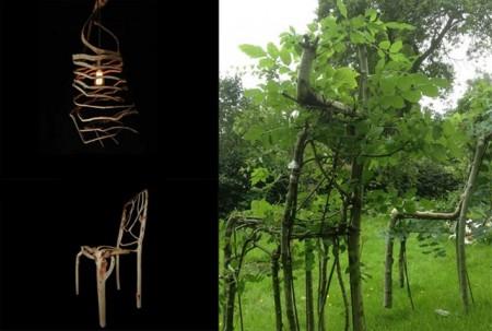 Full Grown - компания выращивающая мебель прямо на грядках