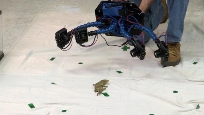 Построен аппарат сканирующий животных в 3D