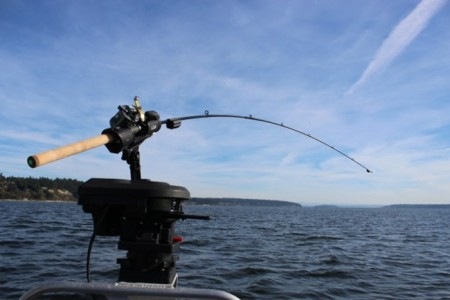Сконструирована удочка для более простой рыбалки