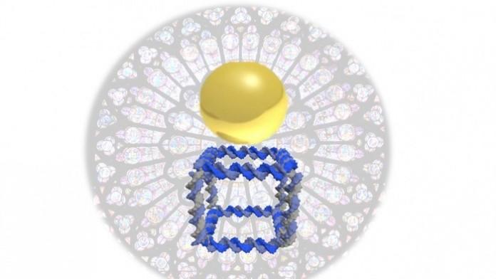 Ученые создали ДНК-печать