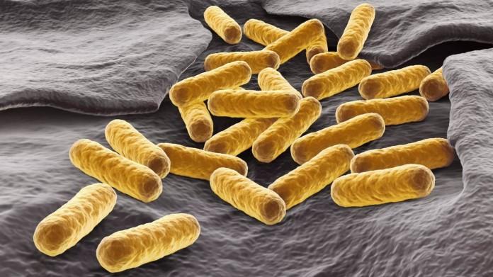 Часть смертельных заболеваний будут лечить квантовыми частицами