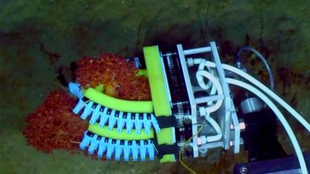 underwater-exploration-soft-robotic-hands-3