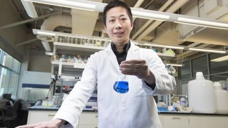 Ученые предлагают краситель из кишечной палочки