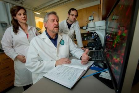 Ученые разрабатывают новое обезболивающее