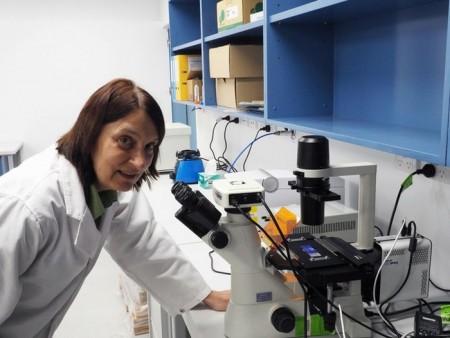 Доктора хотят лечить рак наночастицами и светом
