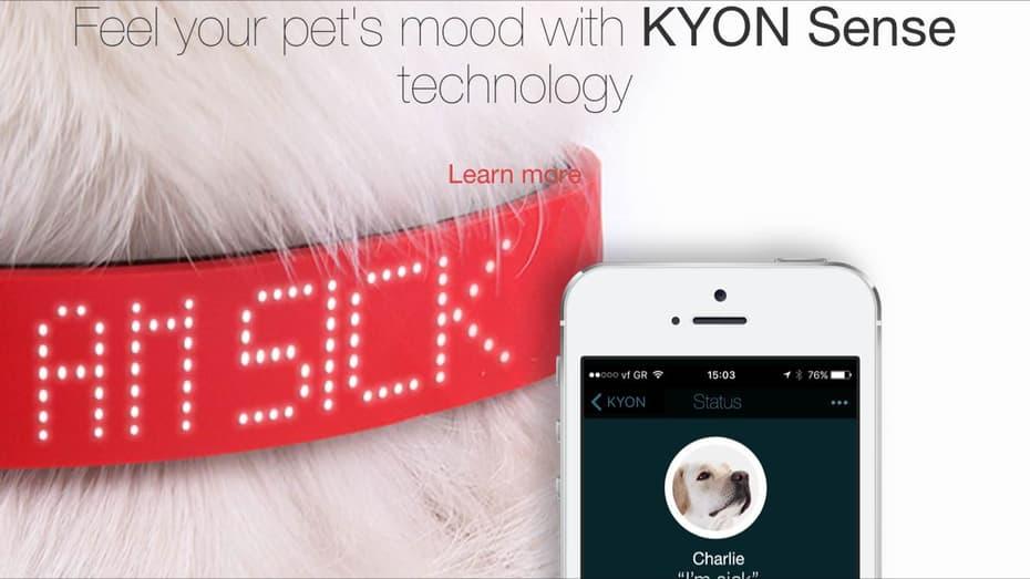 kyon-collar-5