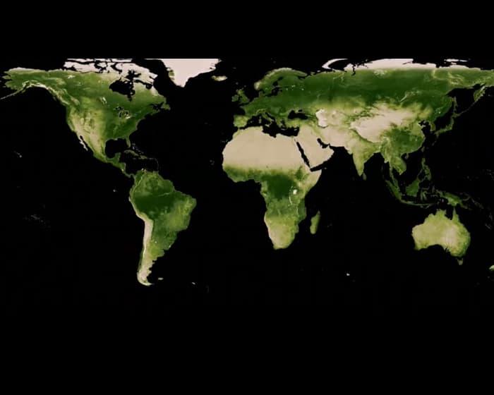 Большое количество СО2 в атмосфере усилило озеленение планеты