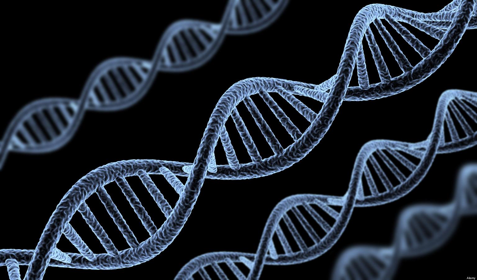 Некоторые гены всостоянии продлить жизнь человеку