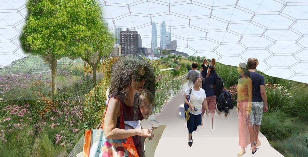 В Нью-Йорке появится плавучий огород