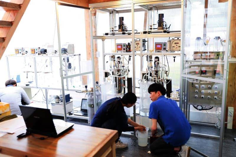 В Южной Корее появился общественный туалет-лаборатория