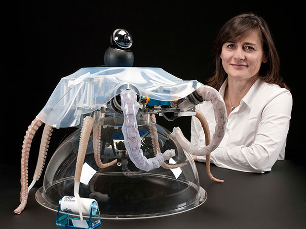 Итальянские ученые создали робота-осьминога