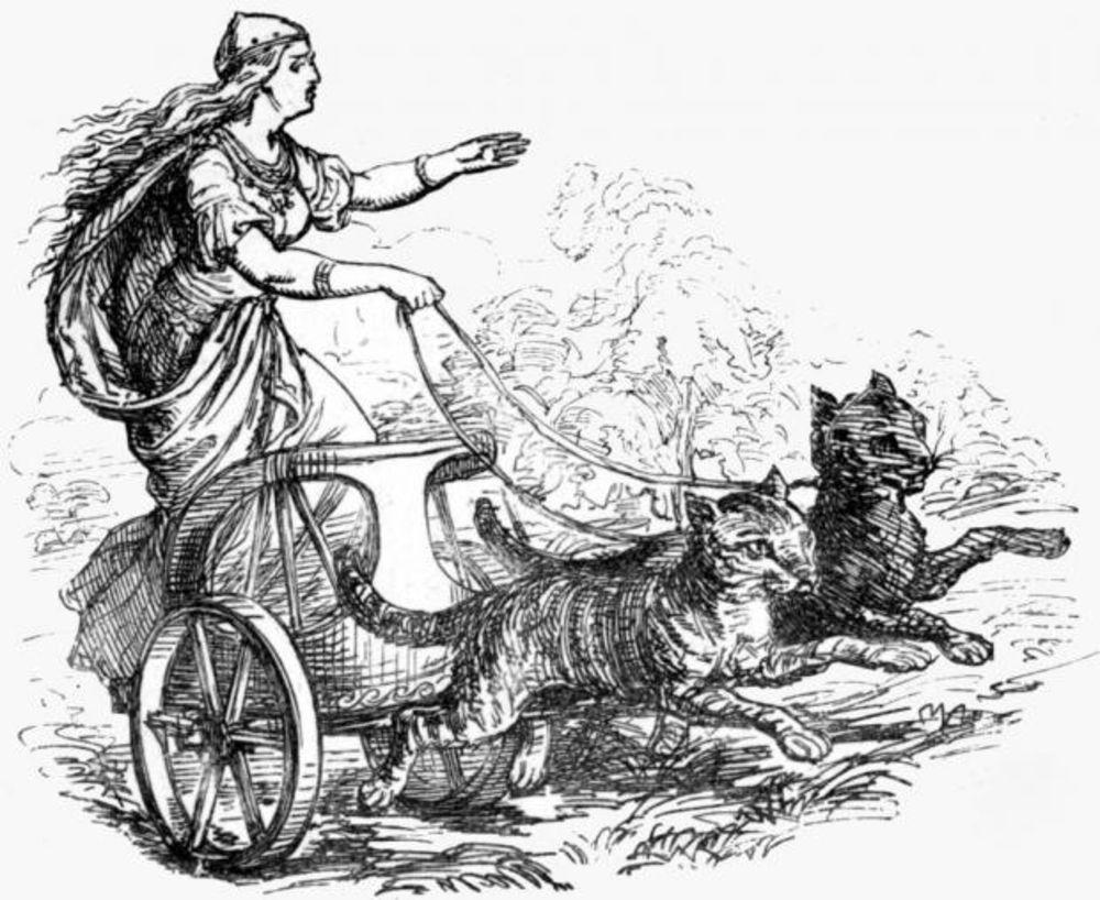 Ученые узнали, что древнейшие викинги брали впоходы котиков