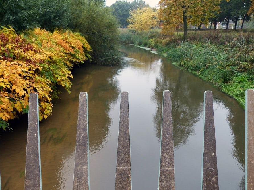 В Голландии построили мост из конопли