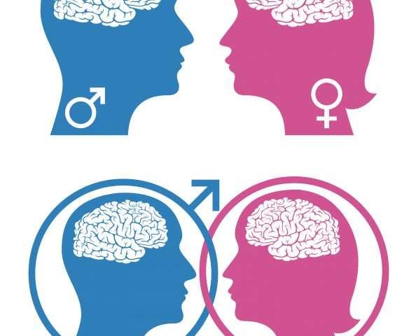 Мозг влияет на различное социальное поведение мужчин иженщин